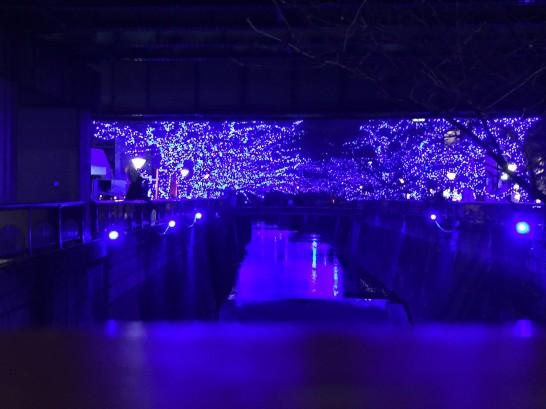 中目黒_青の洞窟2